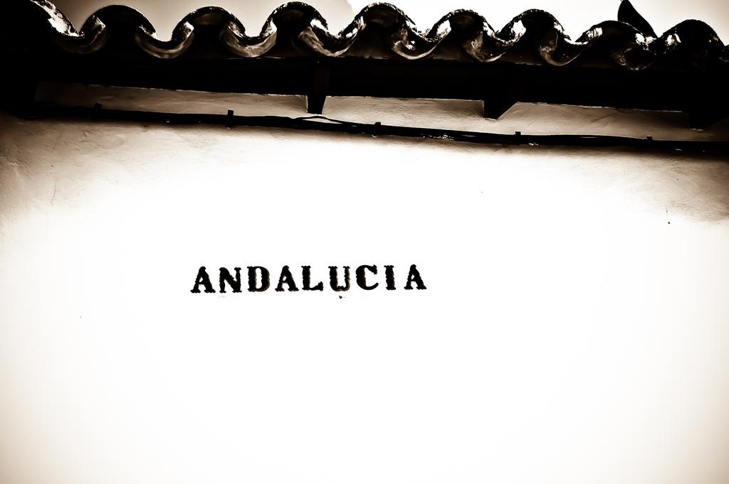 Przewodnik po Andaluzji