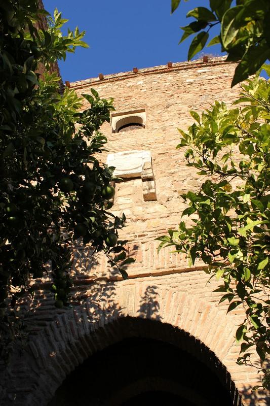 Malaga Alcazaba 11