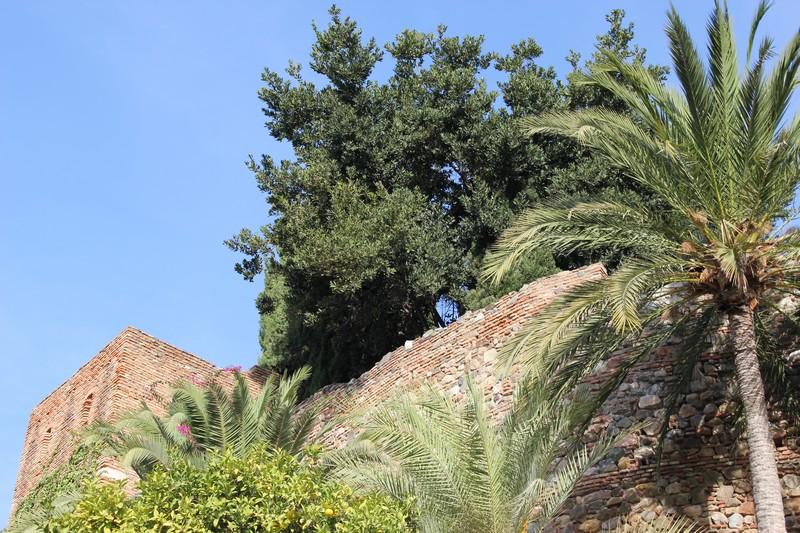 Malaga Alcazaba 54