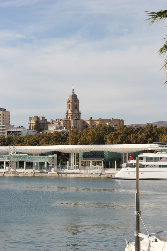 Malaga Katedra 19