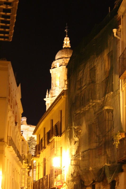 Malaga Katedra 60