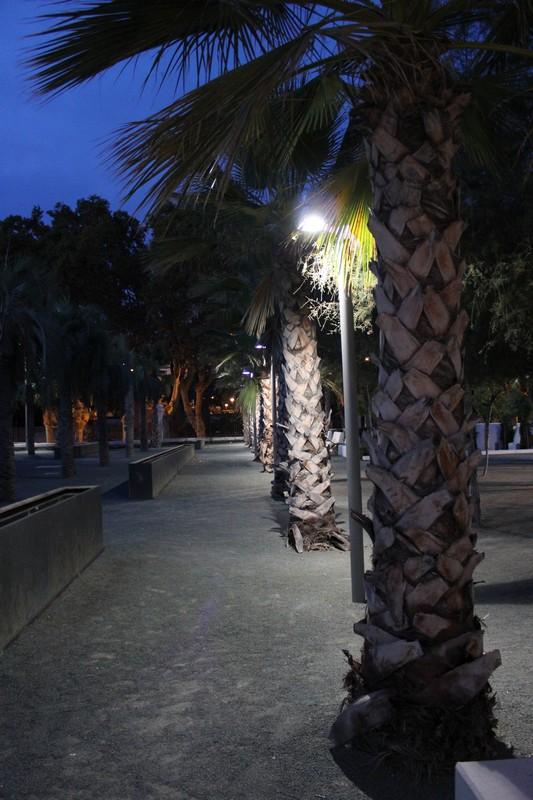 Malaga Palmeral 15